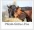 Pferde-Sicher-Plus-Versicherung Uelzener