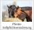 Pferdehaftpflichtversicherung Uelzener